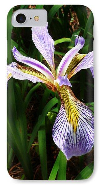 Southern Blue Flag Iris IPhone Case