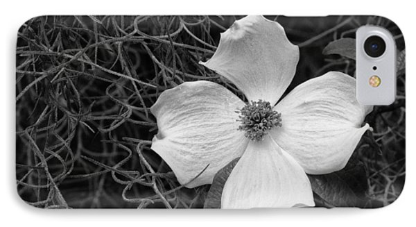 Southern Dogwood IPhone Case by Carrie Cranwill