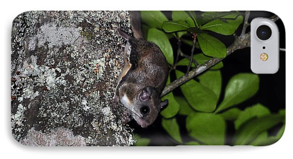 Southern Flying Squirrel Phone Case by Al Powell Photography USA
