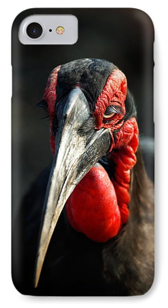 Southern Ground Hornbill Portrait Front View IPhone 7 Case by Johan Swanepoel