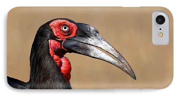 Southern Ground Hornbill Portrait Side View Phone Case by Johan Swanepoel