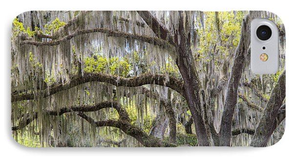 Southern Live Oak With Spanish Moss IPhone Case by Scott Leslie