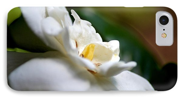 Southern Magnolia IPhone Case by Debi Demetrion