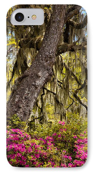 Southern Taste IPhone Case
