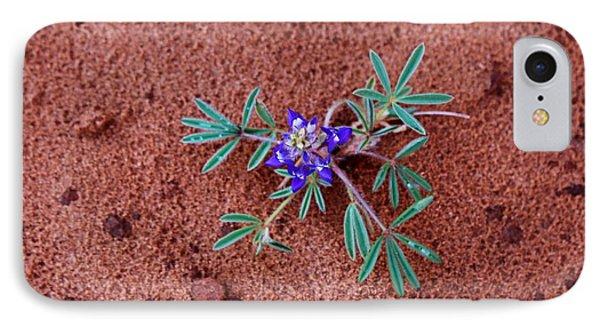 Southwest Wildflower IPhone Case by Suzanne Lorenz
