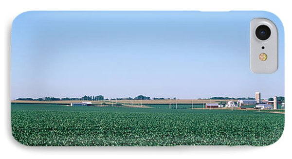 Soybean Field Ogle Co Il Usa IPhone Case