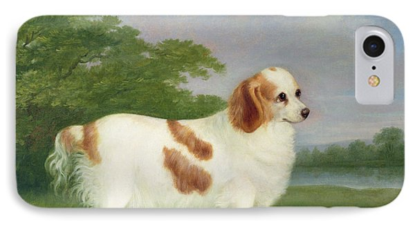 Spaniel In A Landscape IPhone Case by John Nott Sartorius