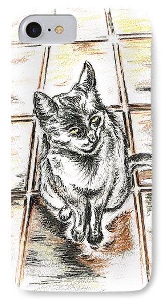 Spanish Cat Waiting IPhone Case by Teresa White