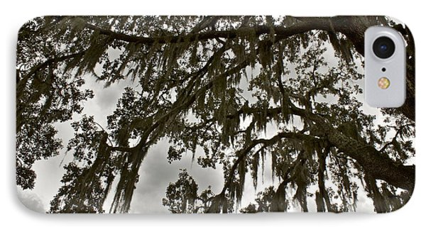 IPhone Case featuring the photograph Spanish Moss by Alice Mainville