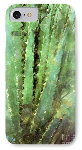 Spanish Sword IPhone Case by Susan Schroeder