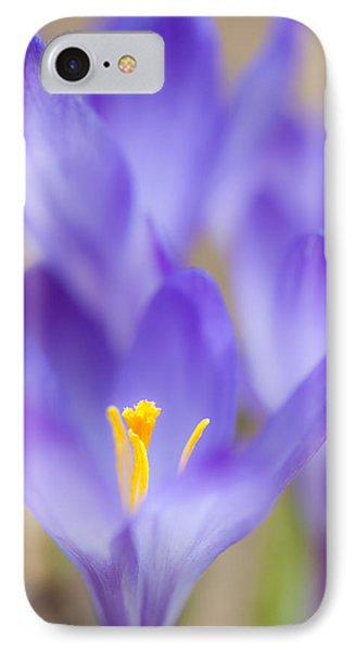 Spark Of Spring IPhone Case by Jean-Pierre Ducondi