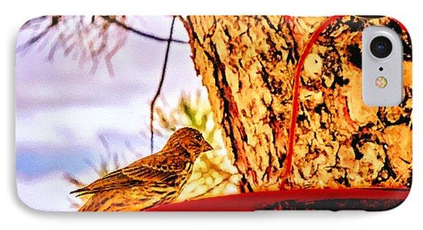Sparrow Pine Tree Feeder Phone Case by Bob and Nadine Johnston