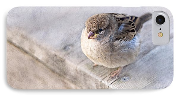 Sparrow - Takeoff Problems IPhone Case by Alexander Senin