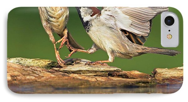 Sparrows Fighting IPhone Case