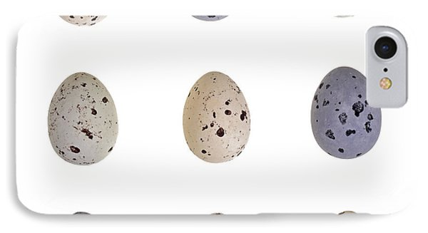 Speckled Egg Tic-tac-toe IPhone Case by Jane Rix