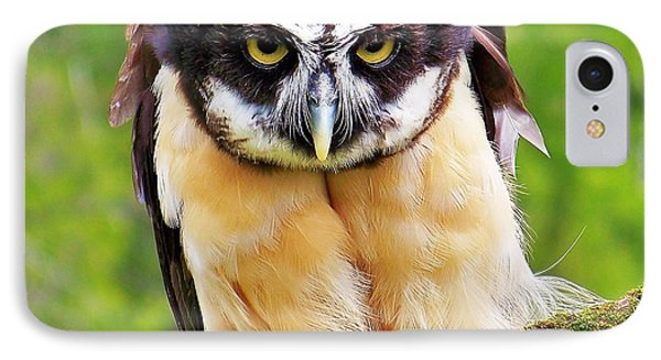 Spectacle Owl IPhone Case