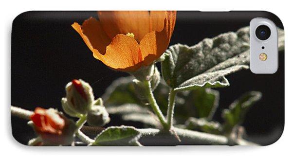 Sphaeralcea Ambigua Phone Case by Joe Schofield