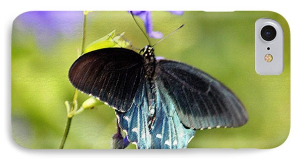 Spicebush Swallowtail Butterfly In Pastel Phone Case by Suzanne Gaff