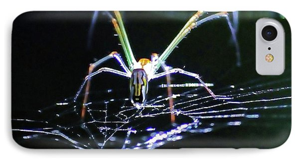 Spider Lights IPhone Case by Kicking Bear  Productions