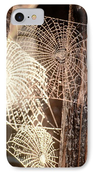 Spider Webs IPhone 7 Case by Anonymous