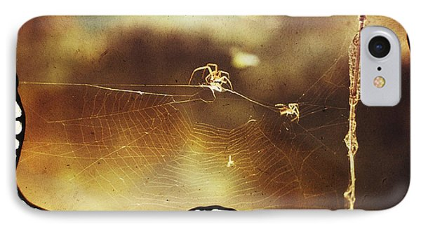 IPhone Case featuring the photograph Spiders by Hartmut Jager