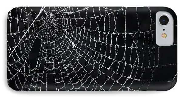Spiderweb With Dew IPhone Case by Elena Elisseeva