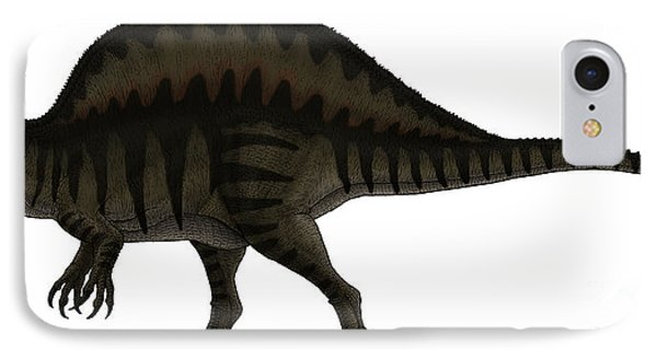 Spinosaurus, A Large Carnivore IPhone Case by Vitor Silva