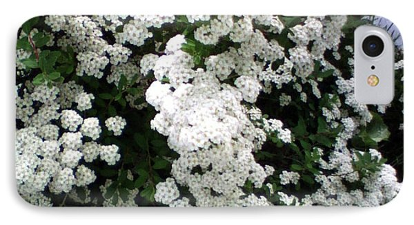 IPhone Case featuring the photograph Spirea Bridal Veil by Barbara Griffin