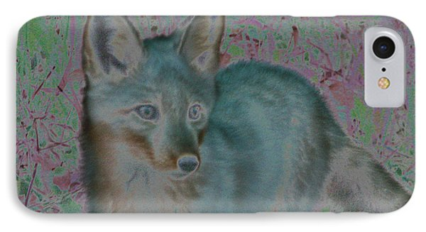 IPhone Case featuring the photograph Spirit Fox by Aurora Levins Morales
