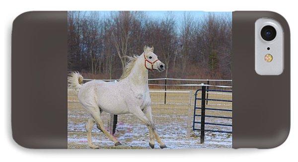 Spirited Horse Phone Case by Kathleen Struckle