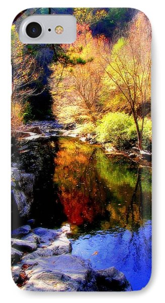 Splendor Of Autumn Phone Case by Karen Wiles