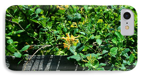 Split Rail Honeysuckle IPhone Case