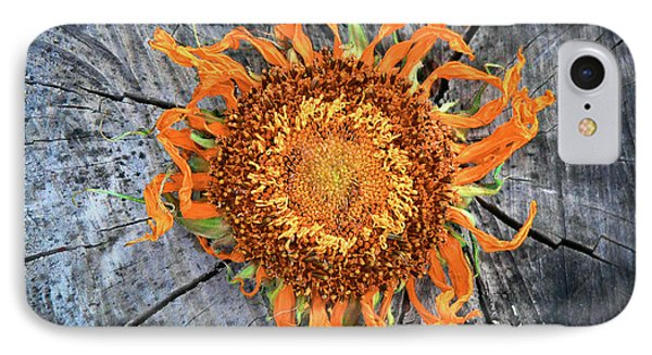 Split Sunflower Phone Case by Angela Wright