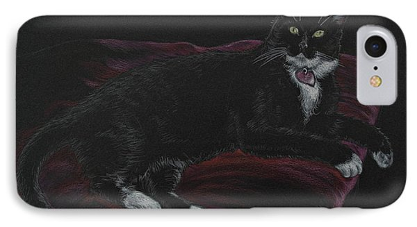 Spooky The Cat IPhone Case by Michele Myers