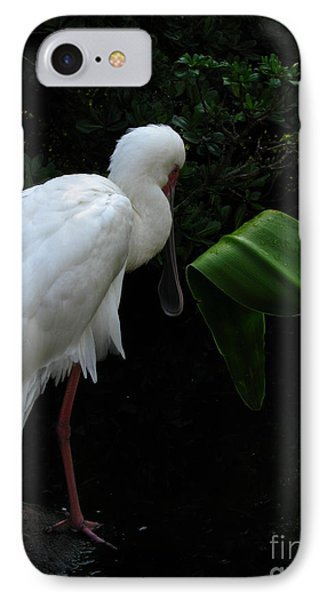 Spoonbill Morning IPhone Case by Greg Patzer