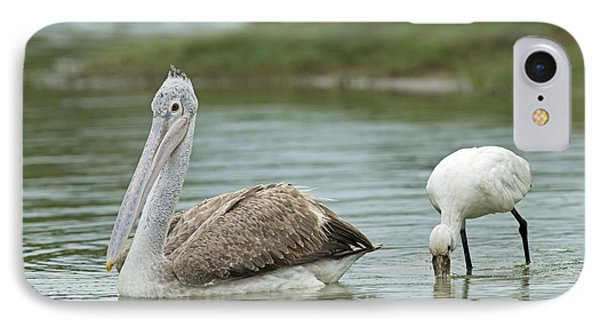 Spot-billed Pelican & Eurasian Spoonbill IPhone Case by Tony Camacho