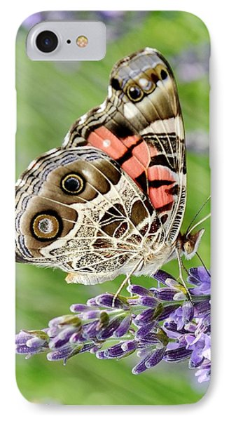 Spotted Butterfly Phone Case by Kim Bemis