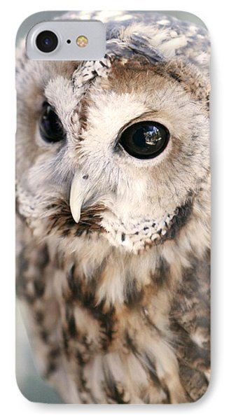 Spotted Owl Phone Case by Shoal Hollingsworth