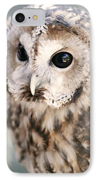 IPhone Case featuring the photograph Spotted Owl by Shoal Hollingsworth