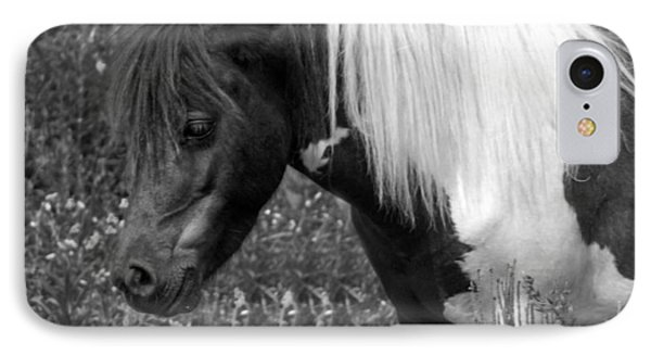 Spotted Pony IPhone Case