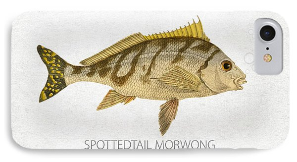 Spottedtail Morwong IPhone Case by Aged Pixel