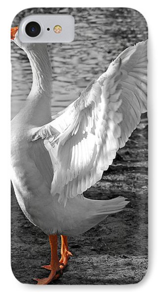Spread Your Wings B And W IPhone Case by Lisa Phillips