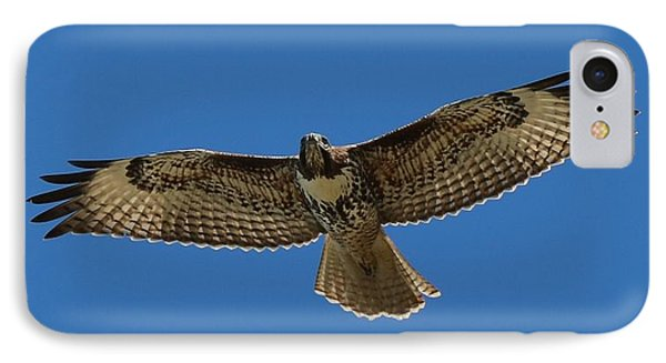 Spread Your Wings  IPhone Case by Christy Pooschke