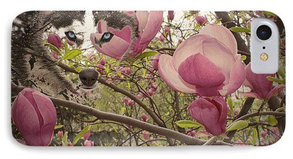 Spring And Beauty IPhone Case by Georgeta Blanaru