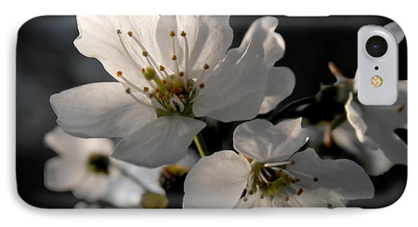 Spring Emerging IPhone Case