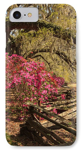IPhone Case featuring the photograph Spring Beauty by Patricia Schaefer