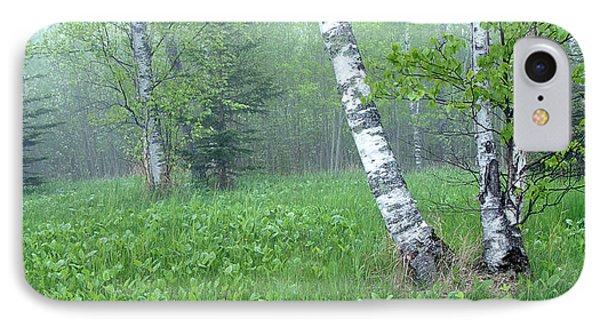 Spring Birch Phone Case by Bill Morgenstern