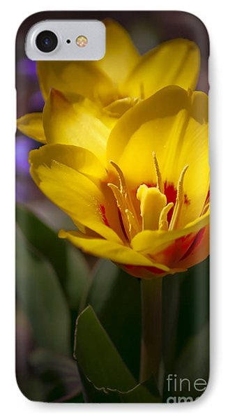 Spring Bloom In Yellow Phone Case by Julie Palencia