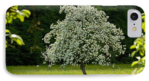 Spring - Blooming Apple Tree And Green Meadow IPhone Case by Matthias Hauser