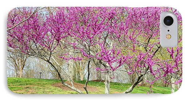 Spring Blooms IPhone Case by Kay Gilley